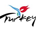 turkiye-dns-ayarlari