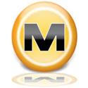 megaupload.com DNS Ayarları