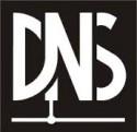 DNS NE ANLAM TAŞIR
